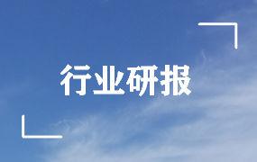 长江证券-建材行业2020年度中期投资策略:乘势而起